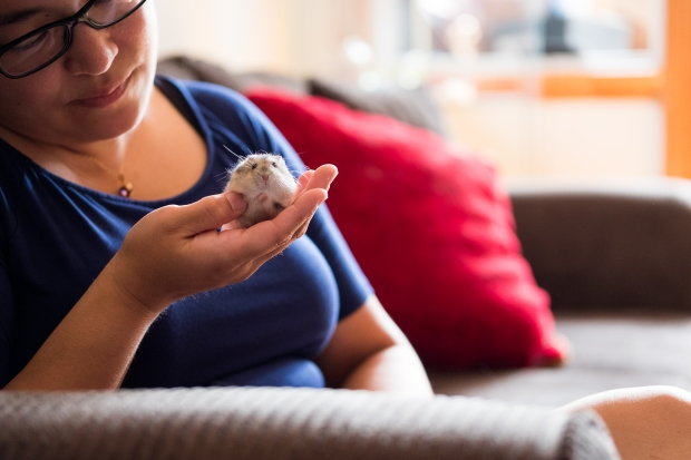 me holding my new hamster, Fred. I offer boarding for hamsters.